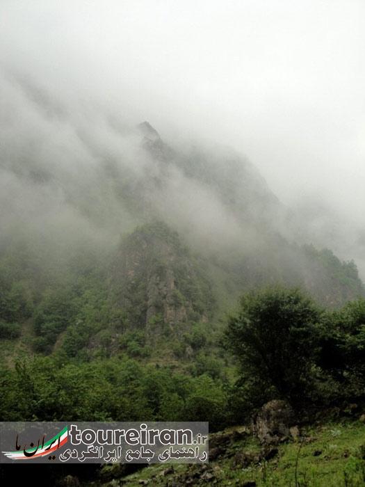 مه در جنگل دالخانی